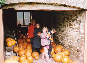 Choosing a Pumpkin at Gelynis Farm